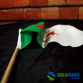 Drapeau Algérie 15x25cm sur tige bois 35cm