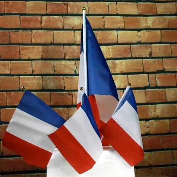 FUNFRANCE - E-Commerce Français : 12 x Drapeau FRANCE sur tige 14x22cm - 2.592€/ht - Lot de 12 drapeaux pour supporter de l'équi