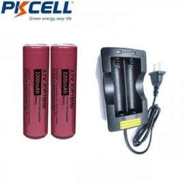 Pack chargeur + 2 batteries 18650 - 2200mAh 3.7v rechargeable